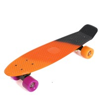 "Fish Skateboards 22"" SunSet"