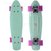 "Пенни борд Fish Skateboards 22"" Pastel Mint"